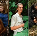 Women's History Month: Women Scientists You Should Know