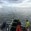 A Summer on the Bay: Living and Working on a Commercial Salmon Boat in Bristol Bay, Alaska