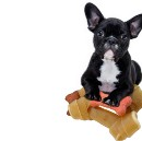 Stop pretending to eat your own dog food