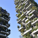 China is about to get its first vertical forest