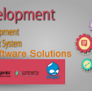 How to develop websites with best web design company in delhi?
