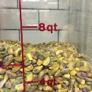 Why our pistachio gelato is (no longer) green