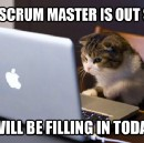 Lessons learned using SCRUM