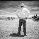 Meet the Charro: Mexican Cowboys Fighting to Save the Art of Horsemanship