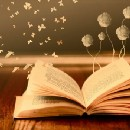 Live the Life Like an Open Book