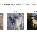 """9-months in the """"hobby"""" of deep learning"""