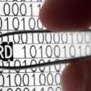 How to Manage Passwords in a Team