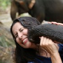 Connecting With Elephants In The Strangest Of Ways