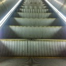 Riding the Magic Escalator of Acquired Knowledge