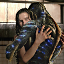 Why Do Movies Assume That Women Want to Fuck A Monster Like the Fishman in 'Shape of Water'?