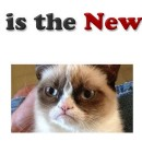 What is the New SEO?