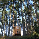 Six-Day Cabin: What we  learned in the woods