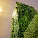 Nine Reasons Why Applying Biomimicry to Built Environment Projects is a Win-Win-Win