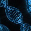 DNA says a lot about you, but do you know what it is?