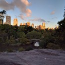 Central Park and the App Store