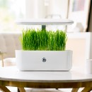 AVA Byte: Creating a Mobile App for an Indoor Smart Garden