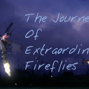 The Journey of Extraordinary Fireflies: Afro-Tech Paper Now Available