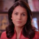 As Fools Fight to Fix a Broken Party, Gabbard Fights to Fix a Broken Democracy