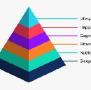 The Human Optimisation Pyramid: Sleep, nutrition, fitness, cognition, happiness and longevity.