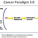 Cancer Paradigms