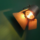 """How To Save Your Startup From The """"Spotlight Effect"""""""