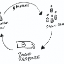 The Action-Reaction Cycle: Consumer Activism Ignites Brand Response