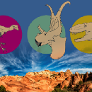 Meet the dinosaurs of Grand Staircase–Escalante, a national monument President Trump is threatening…