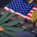 Our Vets Serve Us, Can Pot Save Them?