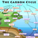 What does it mean to close the carbon cycle?