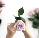 5 Things I Learned Owning a Flower Shop