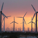 REVEALED: The wind power industry's dirty, oily $7 BILLION secret