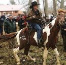 Straight from the horse's mouth: What the Roy Moore horseback footage reveals