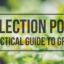 Inflection Point: A Practical Guide for Growth