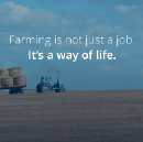 Building a great company is more like farming, than driving a bus