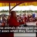 """Burma's """"Bin Laden"""" Compares Rohingya Muslims to Animals Who Eat With Their Asses."""