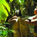 When Grasshopper Means Lightning | How Ecological Knowledge is Encoded in Endangered Languages
