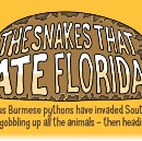 The Snakes That Ate Florida