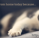 WFH.Ninja, a quotable site for all your excuses