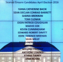 The Seanad can be reformed