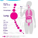 Growing the research evidence on e-cigarettes