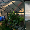 Greenhouse of the future with AWS IoT and Intel Edison
