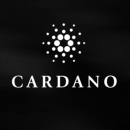 On the Origin of Cardano