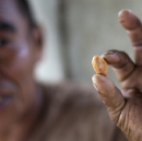 Uncommon Cacao vs. global commodity markets
