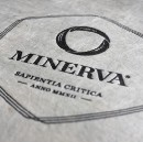Minerva Delivers More Effective Learning. Test Results Prove It.