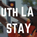 Between the 110 and the 405: Environmental Injustice in South LA