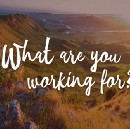 What are you working for?
