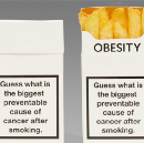 Fighting obesity has nothing to do with fat-shaming