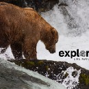 """Explore.org's """"Pearls of the Planet"""" Live Cams welcomes Google Earth Voyager"""