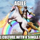 Agile: 3 signs that you may be drinking Unicorn blood
