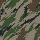 THE THING WITH CAMO PANTS